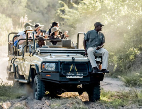 What to pack for your South African Safari?