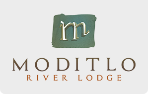 Moditlo River Lodge | South Africa Logo