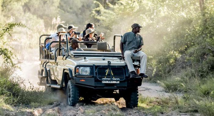pack-south-african-safari