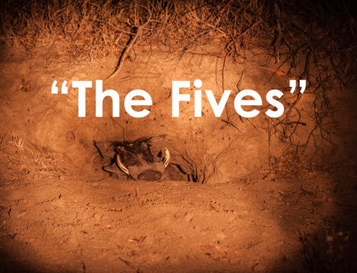 The Fives